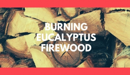 Burning Eucalyptus Firewood: Is Eucalyptus Wood Good For Burning?